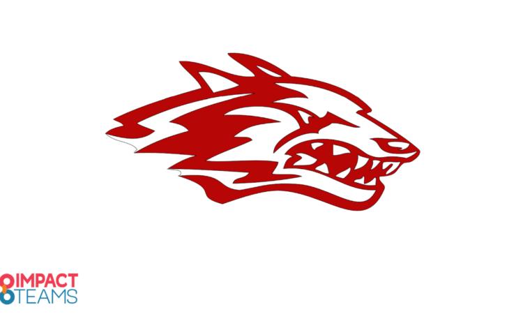 REEDS SPRING SCHOOL DISTRICT- impact teams