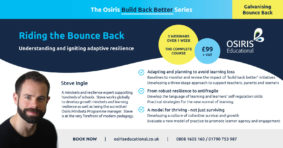 Riding the Bounce Back